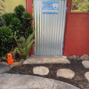 dog boarding entrance